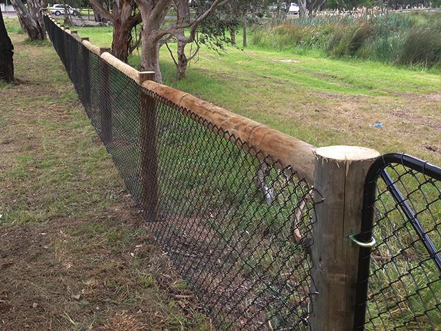 Post & Wire Fence, Yarrambat