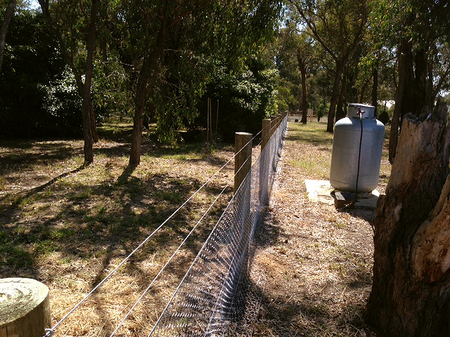 Rabbit Proof Fencing, Yarrambat